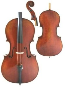 41wvZhW19yL1-225x300 Best Cello Brands & Models 2020: Beginner & Intermediate Reviews