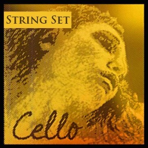 61TDt1NotSL1-300x300 Best Cello Strings & Combinations 2020