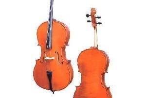 dz-strad-cello-300x202 Blog