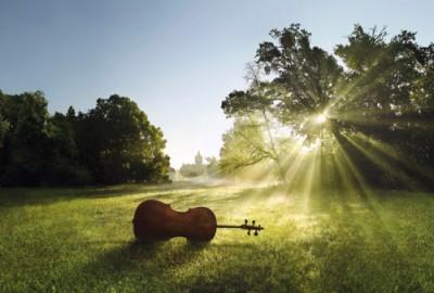 summer cello