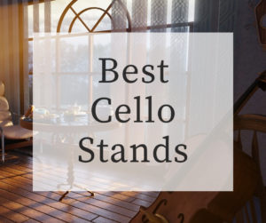 best-cello-stands-300x251 Best Cello Stands 2021